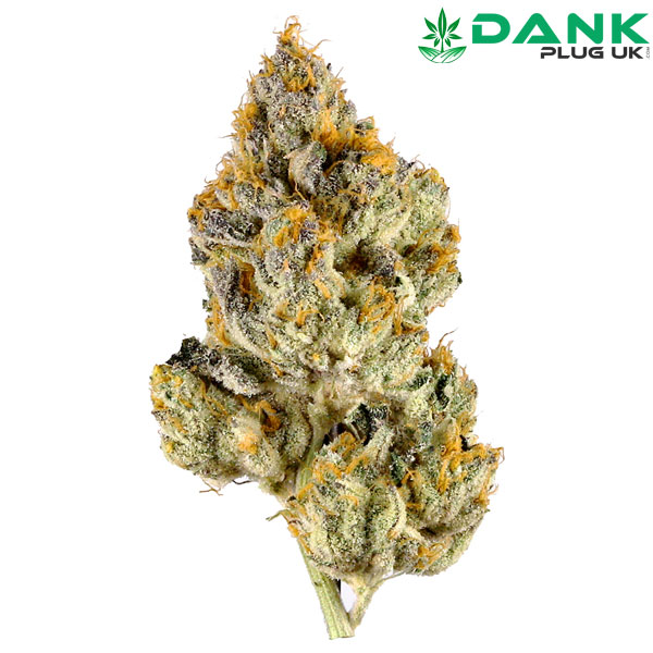 White Tahoe Cookies for Sale